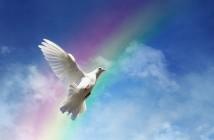 dove-peace-sky-pigeon-white-1961