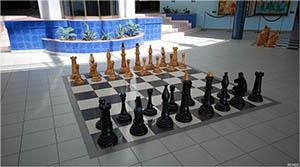 Во Дворце шахмат