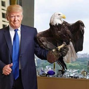 16-october-trump-eagle