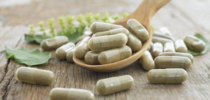 probiotics-for-dogs-1