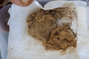 Ткань, в которую заворачивали свитки