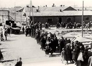 Аушвиц-Биркенау. Женщин и детей ведут в газовые камеры