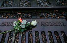 holocaust-640x480-copy