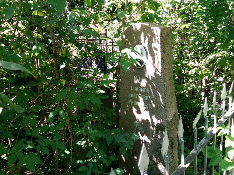 Это еврейское надгробие через несколько лет будет погребено под деревьями и кустарником. Фото: Шимон Бриман.