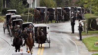 Амиши отказываются от автомобилей и в основном передвигаются на лошадях и в повозках. Getty Images