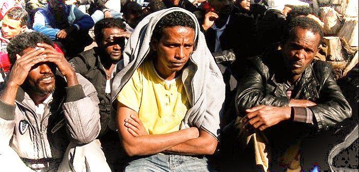 «Беженцы», «гуманизм» и «расизм» – в кавычках и без  Plitim-700x336