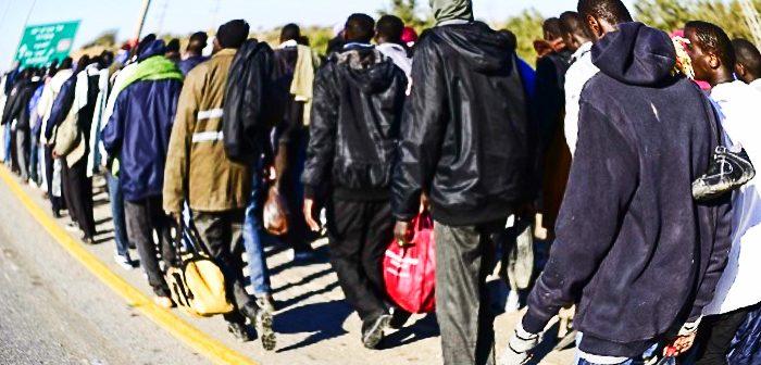 Иммиграция или вторжение? Инфильтранты на юге Страны