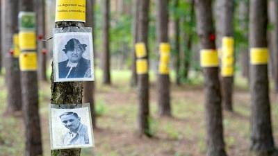 Исследователи последних лет, применяя уточненные методики расчета, говорят о 60 тысяч убитых фашистами