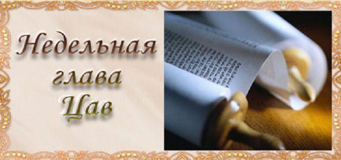 nedelnaya-glaoova-1-520x24522222222