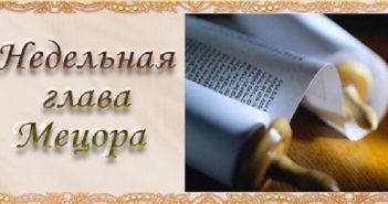 nedelnaya-glaoova-14444