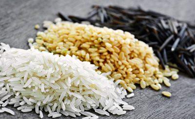 ris-raznovidnosti-primenenie-vybor-i-hranenie-1ааааааа