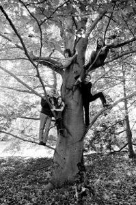 Семья Бернштайнов — Леонард, Нина, Александер, Джейми, Фелисия и собака Хани — в поместье в Фарфилде, Коннектикут, 1970 год. Фото: Milton H. Greene