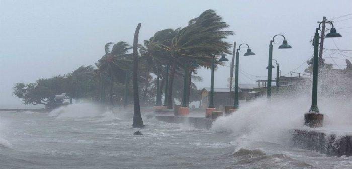 Ураган «Ирма»: не в климате дело, дружище