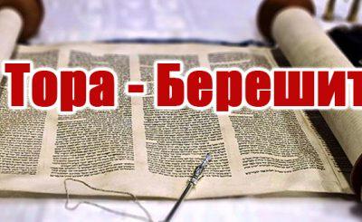 lemeshaev.in_.ua-›-category-›-берешит