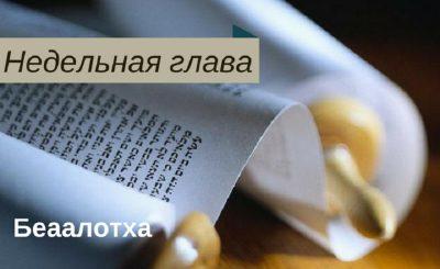 thumb-z5ui4bкккккккккк