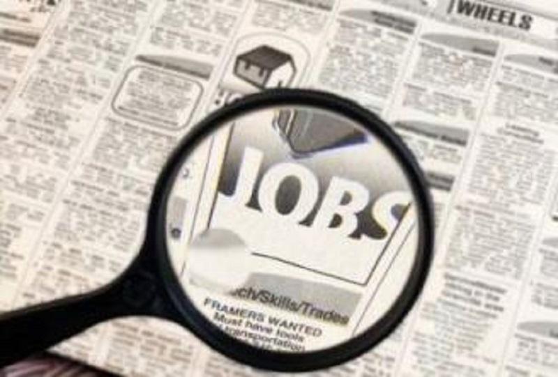 job_search_841298554_636876375ffffffff