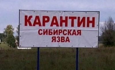 Сибирская язва_Карантинffffffffffffffff